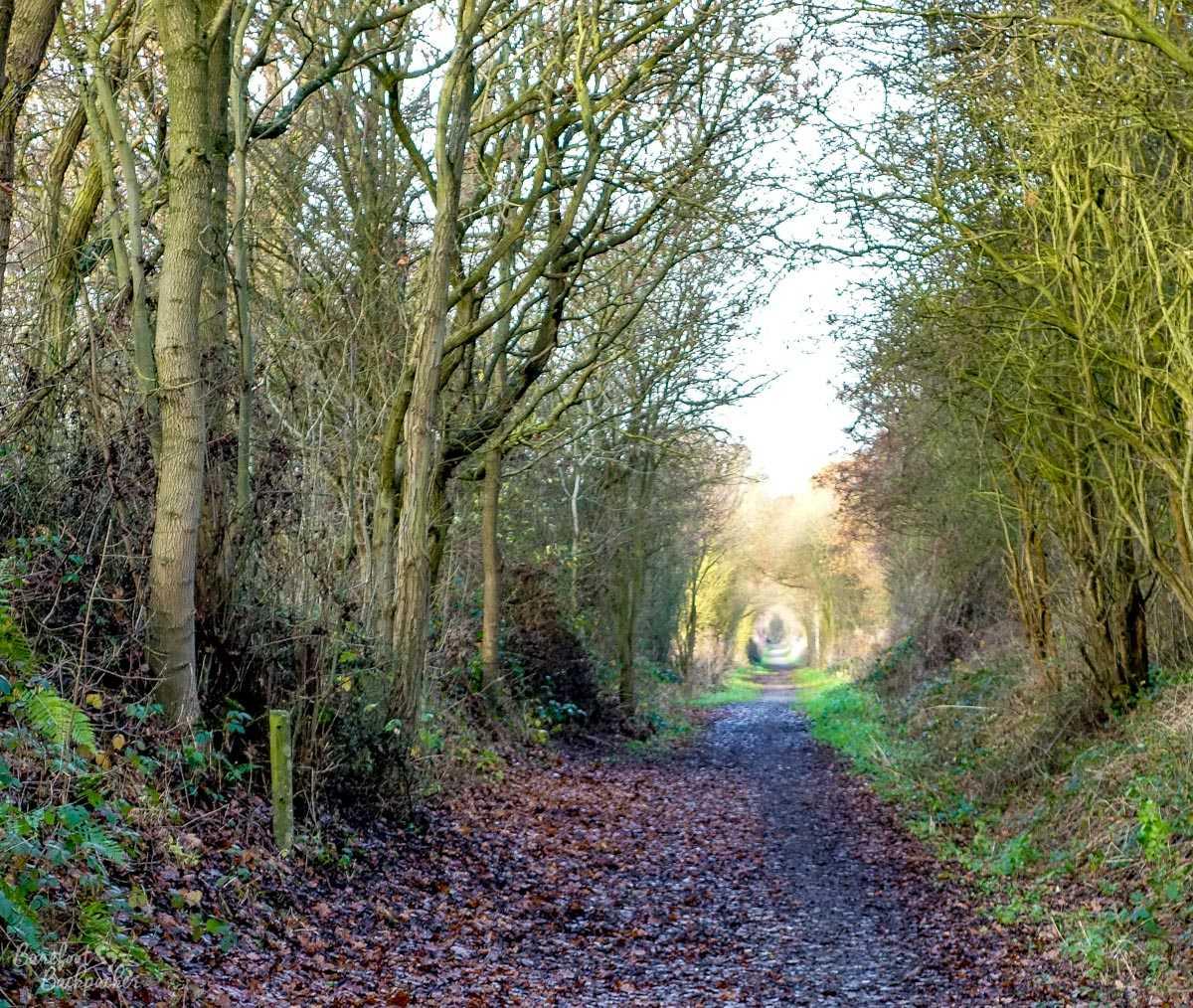 The Stockley Trail, Doe Lea, Bolsover