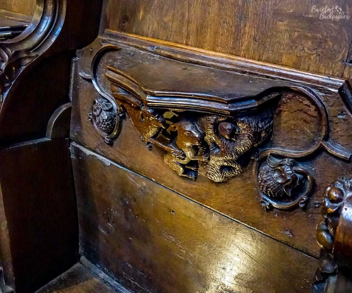 Misericord inside Ripon Cathedral.
