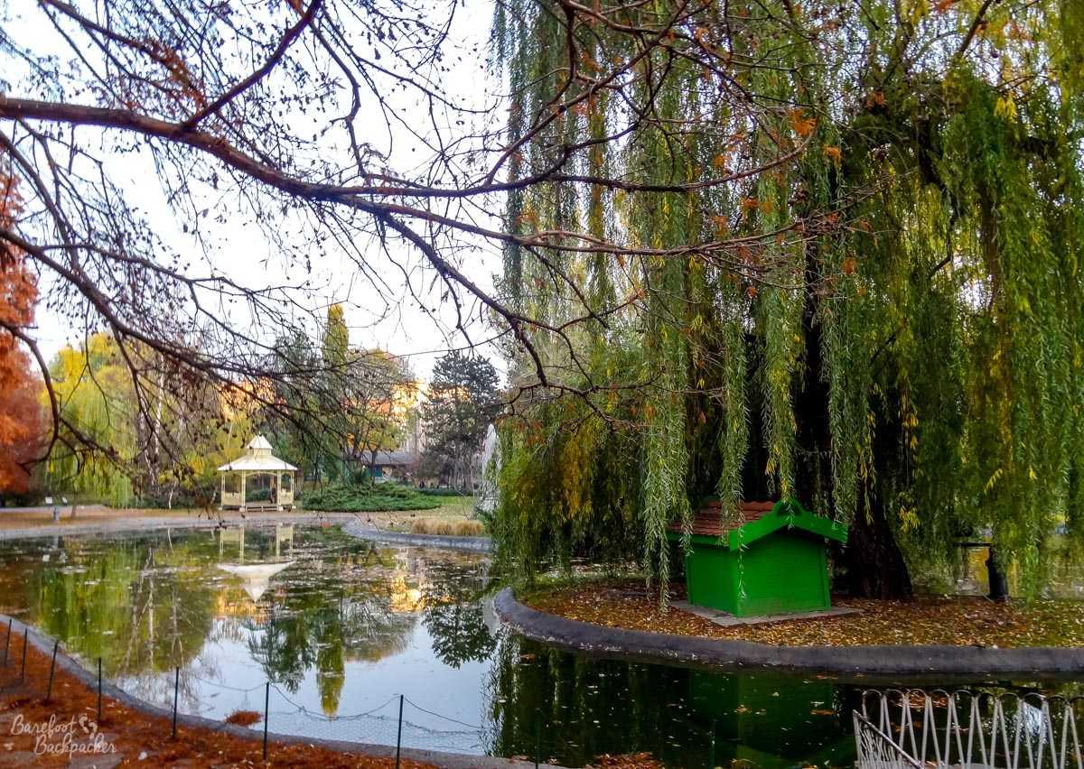 Novi Sad park
