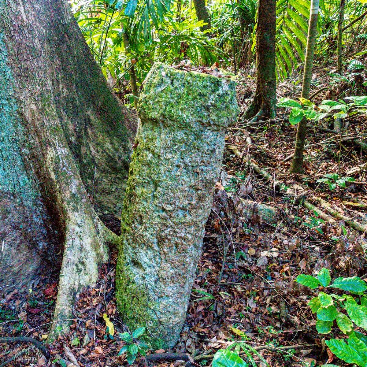 Cannibal execution stone, Malekula.