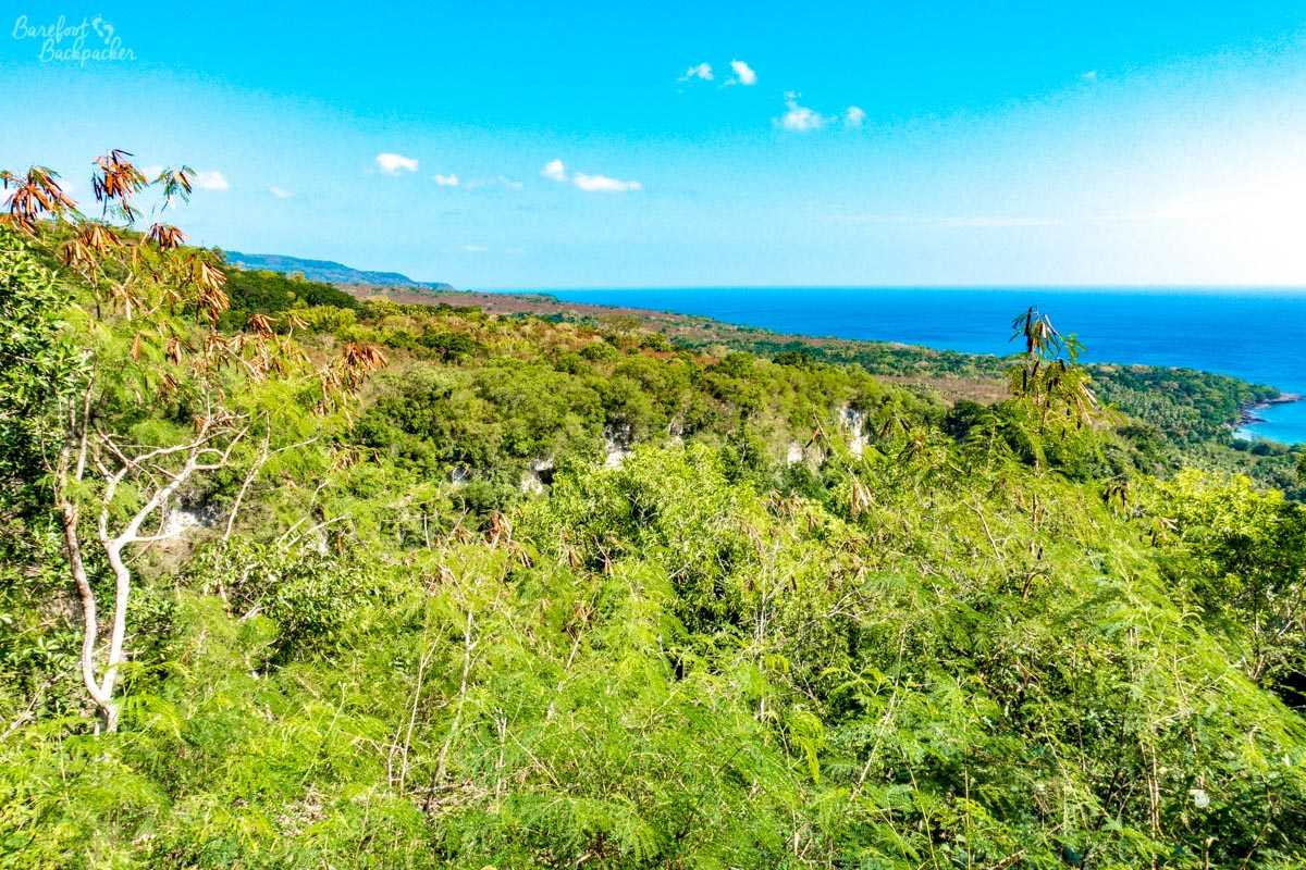 The view at the end of the Dog's Head Trail, at Malua Bay, Malekula.