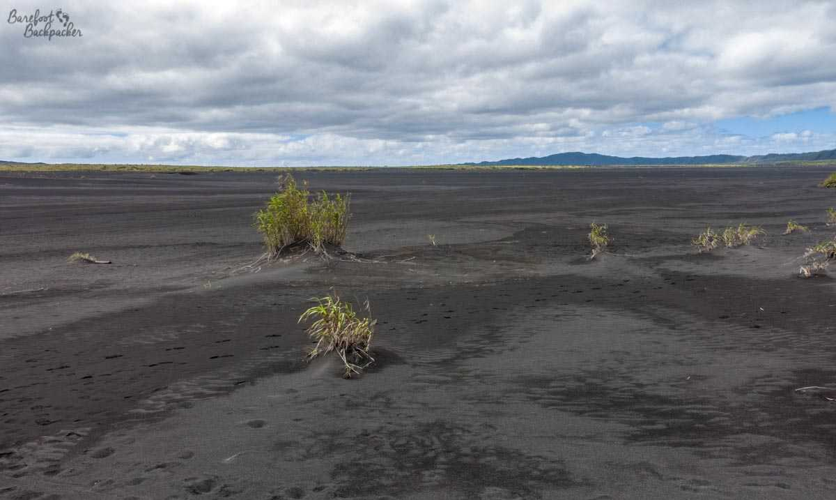 The ash plain on Ambrym