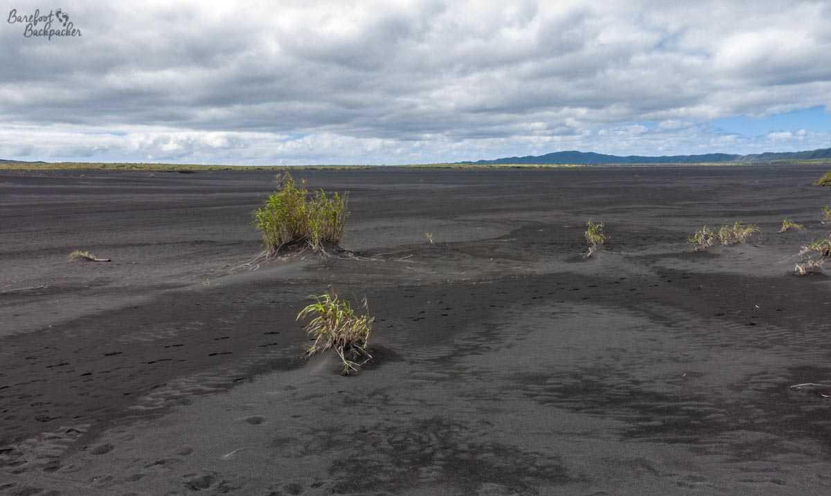 The ash plain on Ambrym