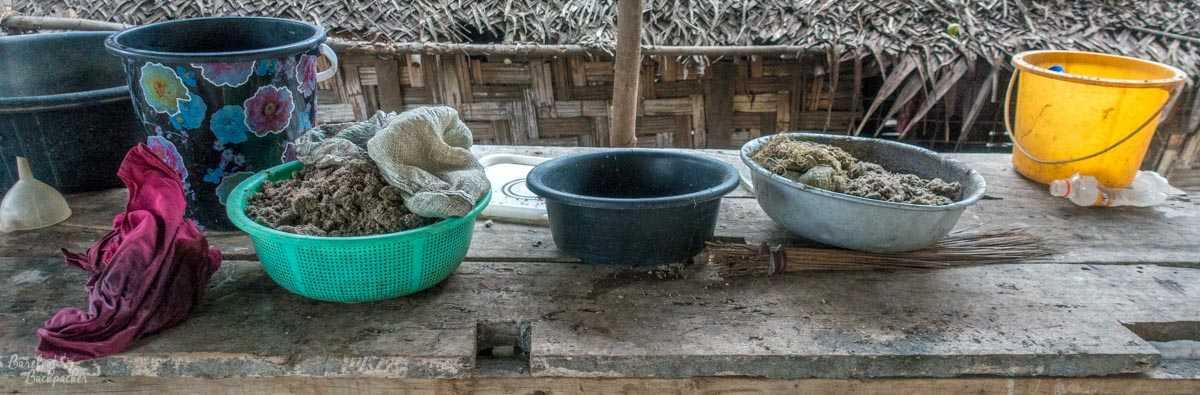 Kava preparation, Ambrym, Vanuatu.