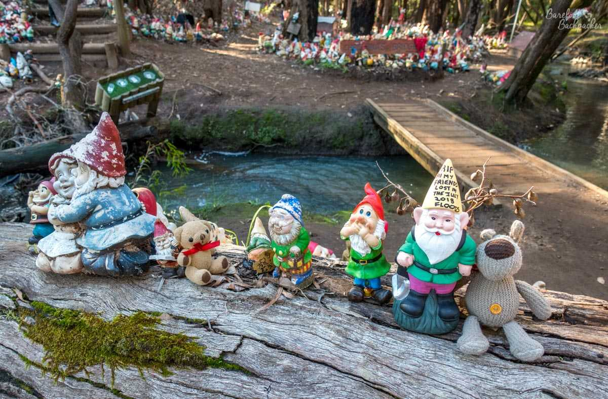 Some more gnomes at Gnomesville