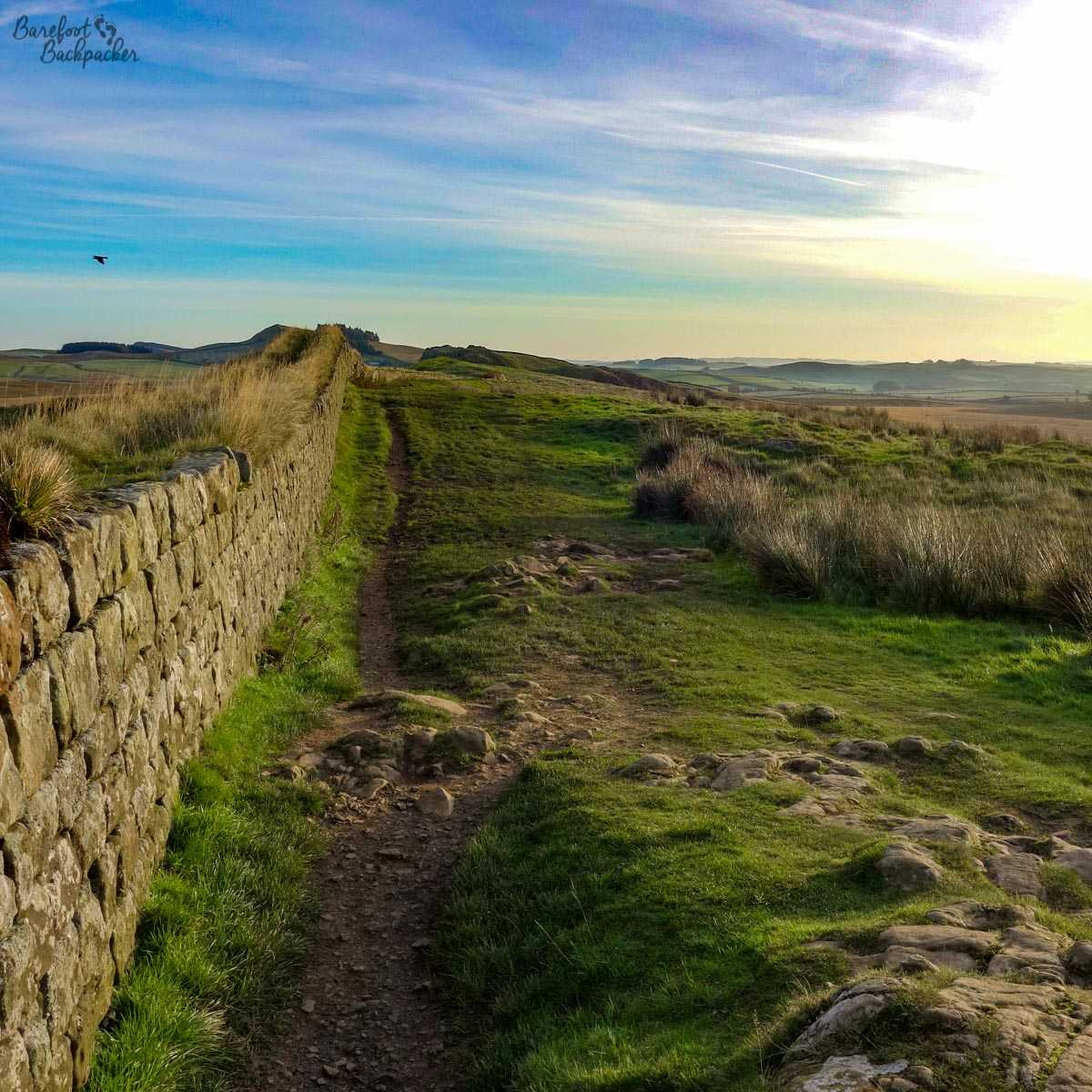 Hadrian's Wall, near Housesteads. Pic taken October 2017.