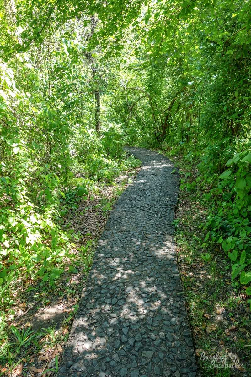 The Rainforest Path at Victoria Falls – a very humid cobbled stone pathway winding through the rainforest
