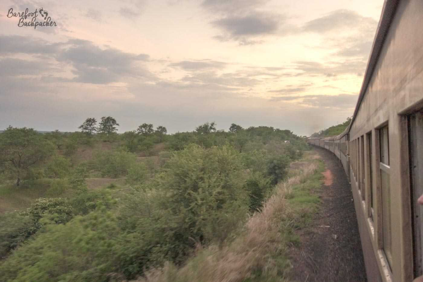 The train that runs between Victoria Falls and Bulawayo, not long after setting out, going through the shrubland of northern Zimbabwe.