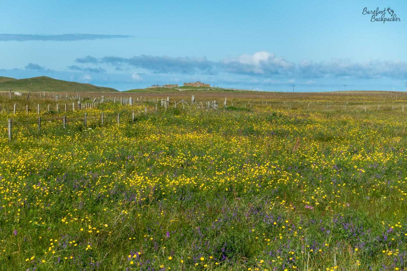 Looking out over the machair, fields of wildflowers, towards a ruined church on the west side of South Uist