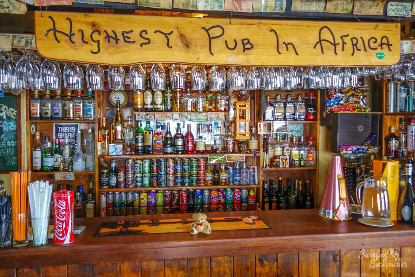 Unable to go for a hike, Baby Ian sits by the bar at the Highest Pub in Africa, in the Sani Pass Lodge, Lesotho