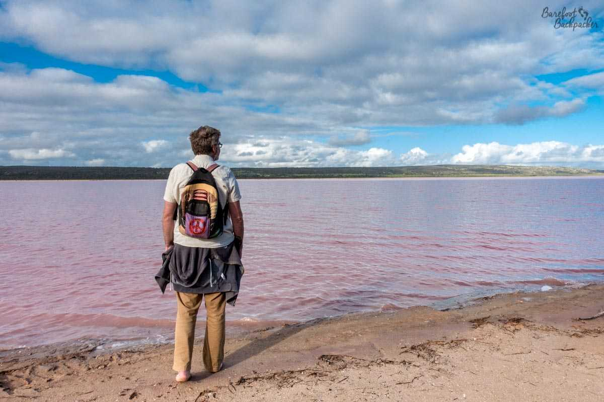 Hutt Lagoon, the pink lake in Western Australia, at shore level. The Barefoot Backpacker looking out over it, pensively, on-brand.