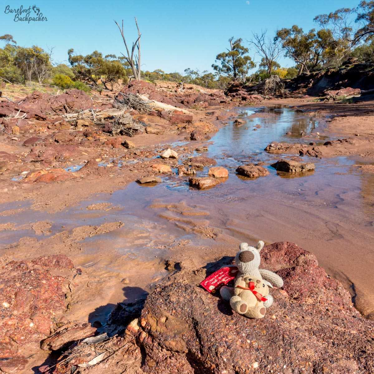 My companions Baby Ian And Dave, sitting quietly on the rocks by the river that runs through the Coalseam site.
