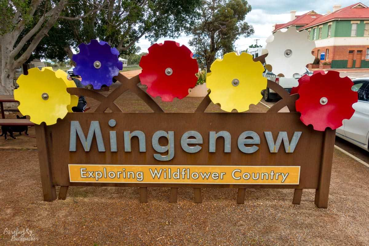 The signpost welcoming you to the town of Mingenew – Exploring Wildflower Country is the tagline.