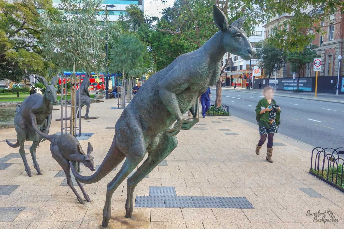 Statue of kangaroos in the centre of Perth, by Joan Walsh-Smith. I talk more about these later.