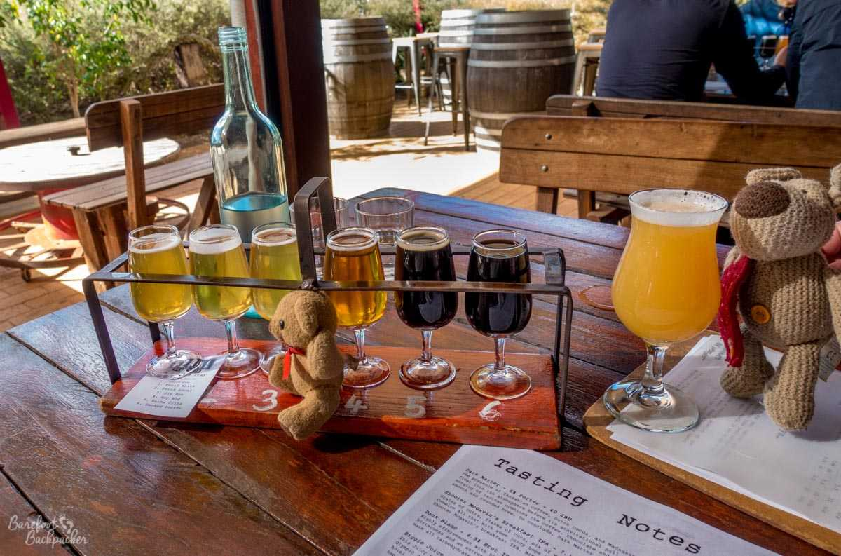 Feral Brewing, in the Swan Valley. A series of glasses in a beer flight, plus a larger beer left over. Baby Ian and Dave are very interested.