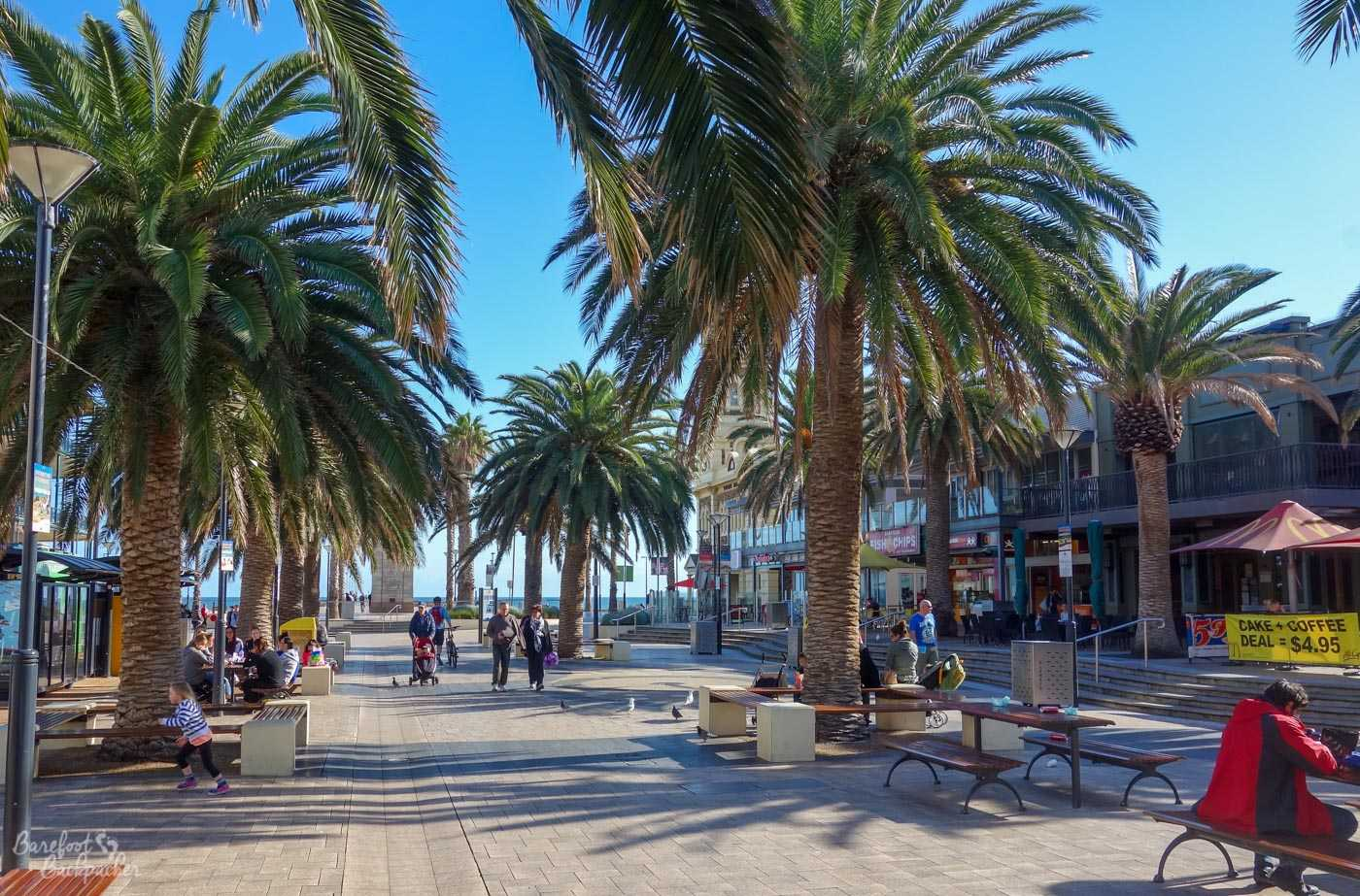 The centre of Glenelg, the road that runs down to the seafront. It's wide, lined with palm trees and cafés, and pedestrianised.