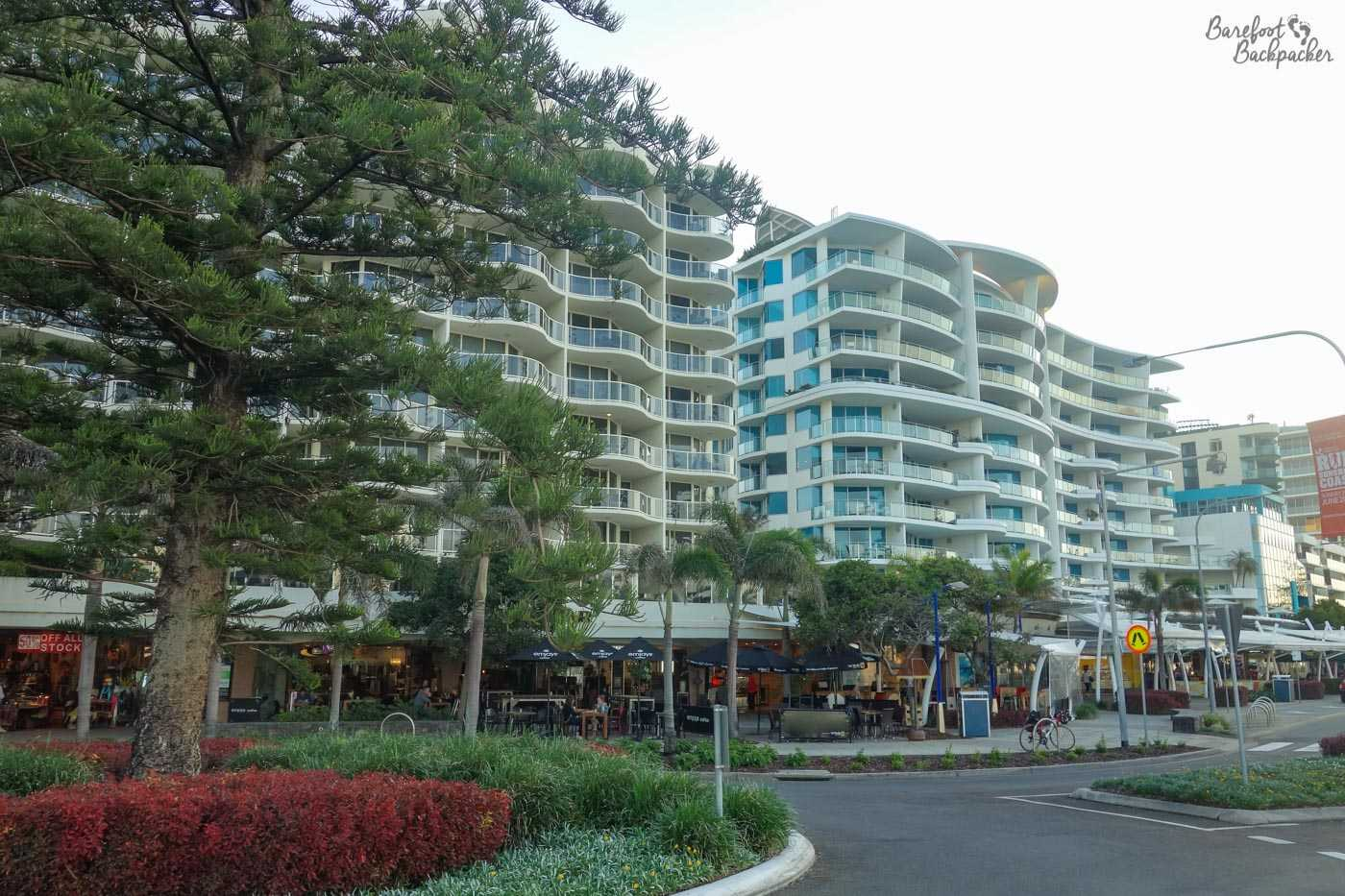 Mooloolaba promenade, complete with large condos on the left, and palm-like trees on the right.