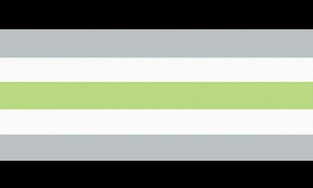 Agender Pride Flag. Equal stripes across, from the top down: black, grey, white, pale green, white, grey, black. What?