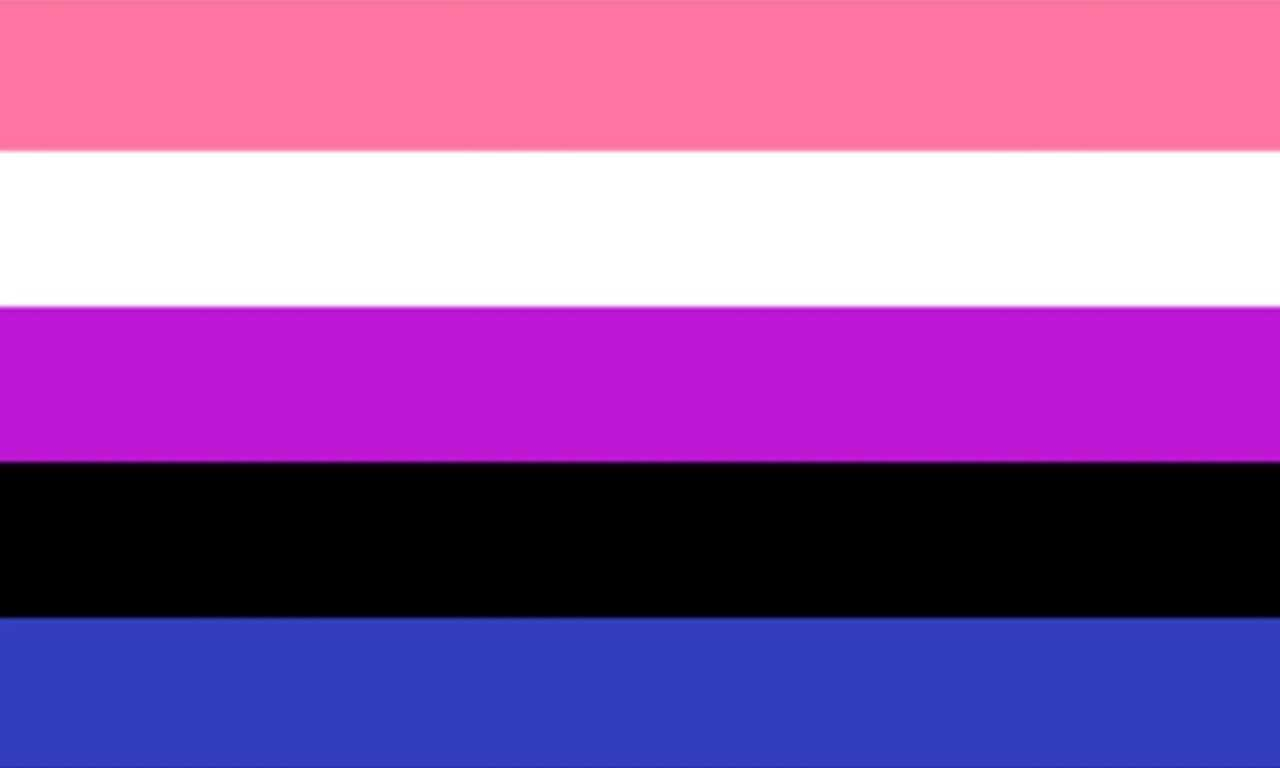 GenderFluid Pride Flag. Equal stripes across, from the top down: pale red, white, purple, black, dark blue. Yep, a weird combination.