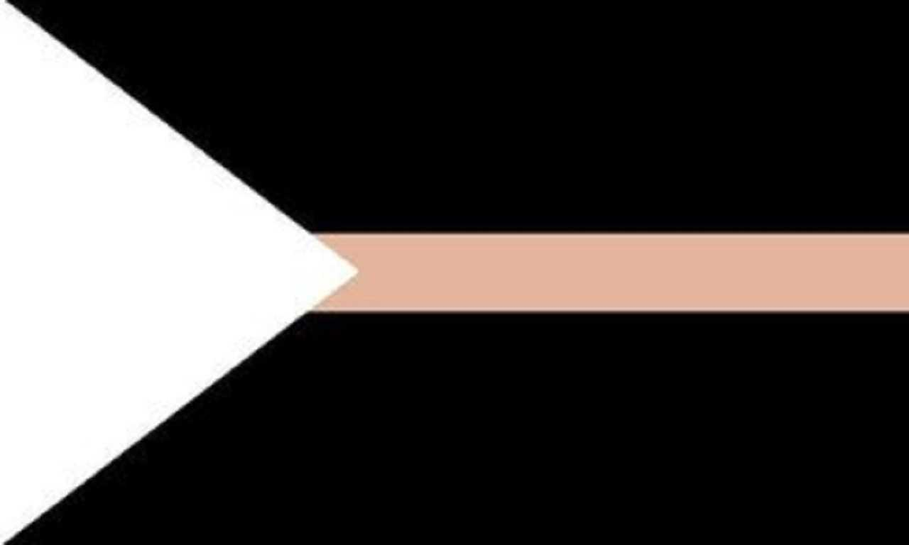 Noetisexual Pride Flag. Oh god. White triangle on the left side that comes to an apex maybe a third of the way across the flag's width. From the apex across the rest of the flag is a thin peach stripe. The rest of the flag is black.