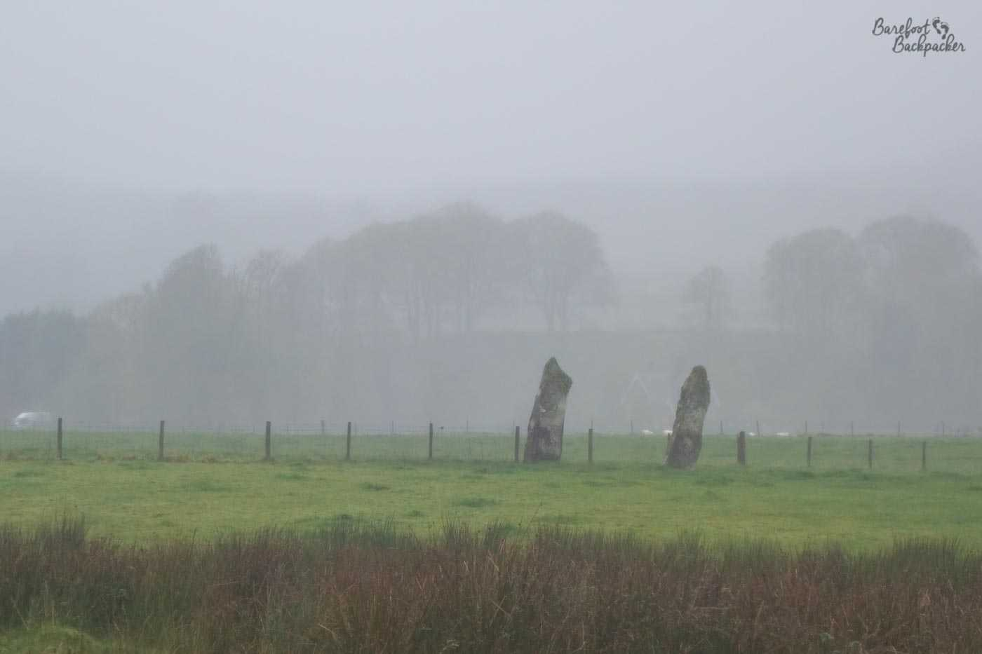 Two standing stones of pre-iron-age origin, standing in a field of sheep. It's very misty and damp.