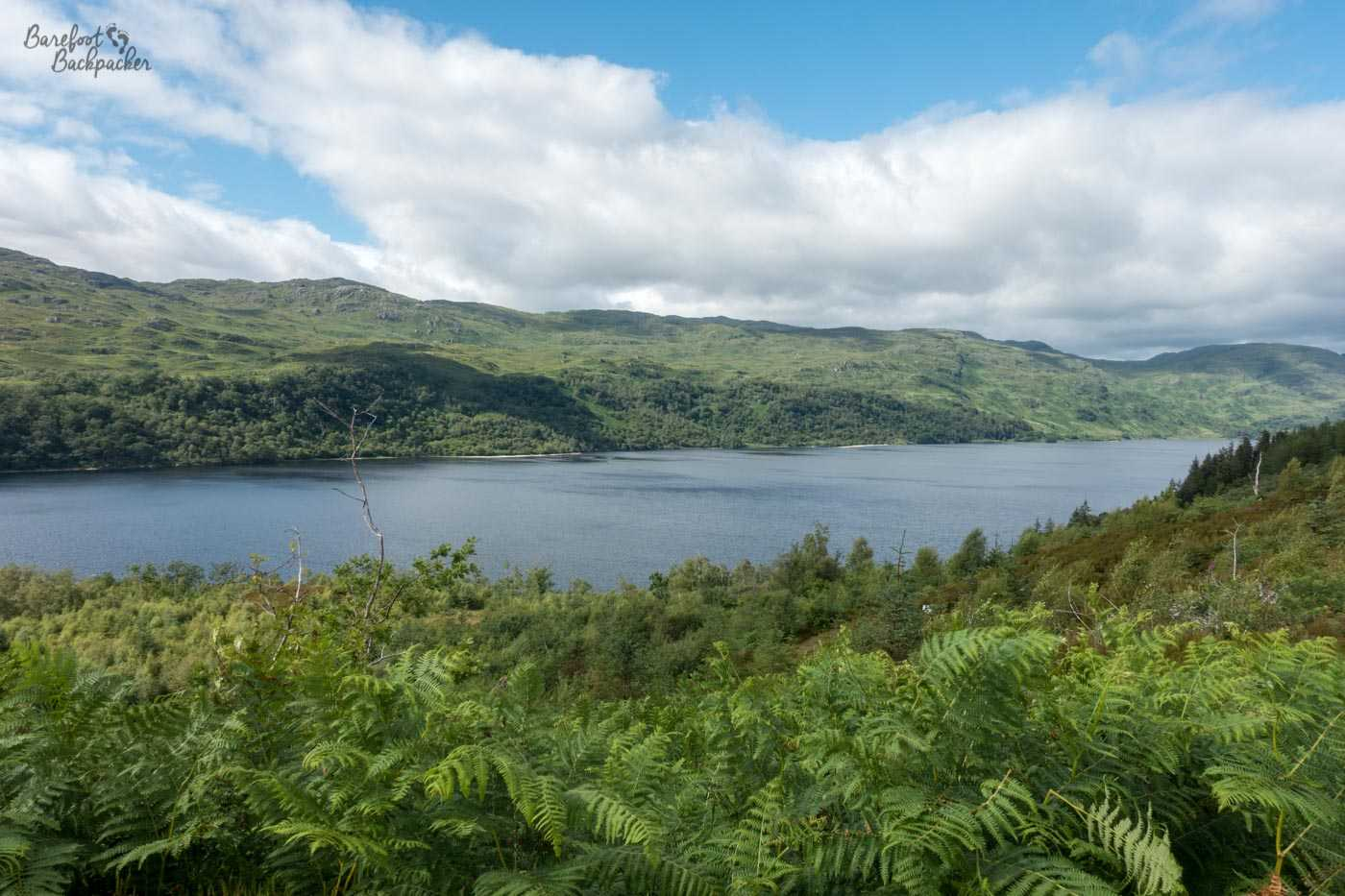 In the foreground are ferns. The middle of shot is the loch, stretching right across the image. It's constantly quite wide. In the background are green hills, the lower stretches are covered with trees but the upper reaches are quite bare. The sky is quite blue with large patches of cloud.