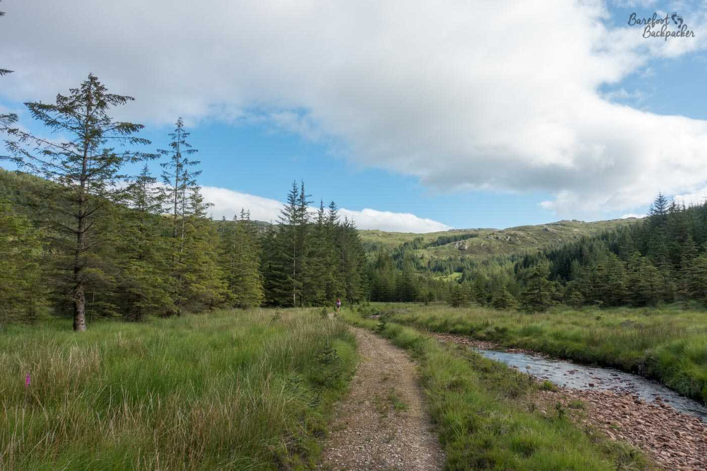 A gravel trail meanders through grass. Just to the right is a small pebbly stream. There are trees either side, conifer/pine type trees. Hills are head. Blue sky and streaky cloud above. Middle of nowhere.
