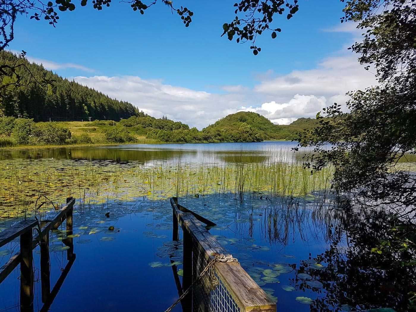 Loch view, flooded slipway and some reeds in foreground, grassy bushy and foresty inclines on the far side of the loch. Blue skies.