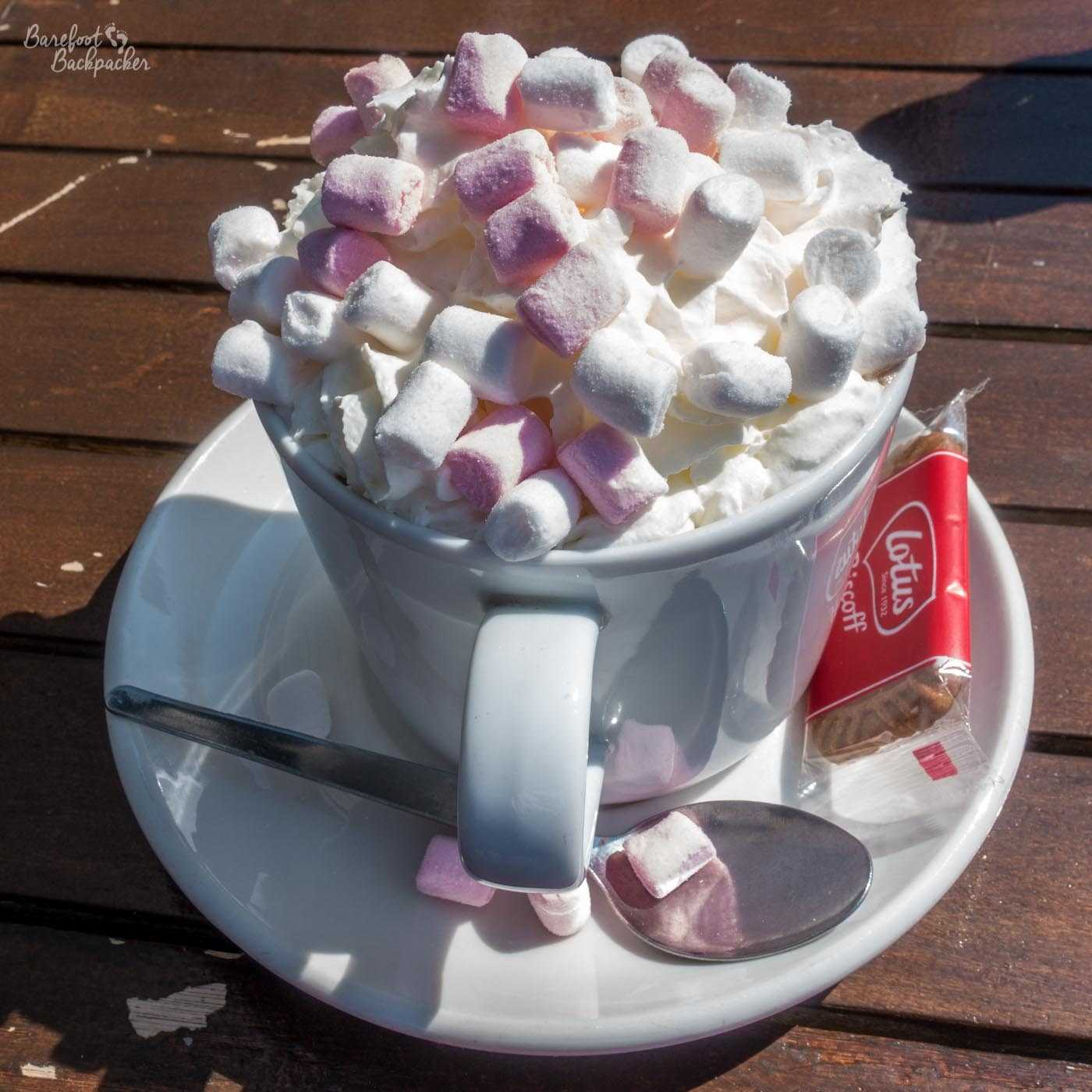 A mug of hot chocolate, with pink marshmallows. A welcome late breakfast, in a cafe on the Norfolk Coast Path that no-one reading this can ever have again.