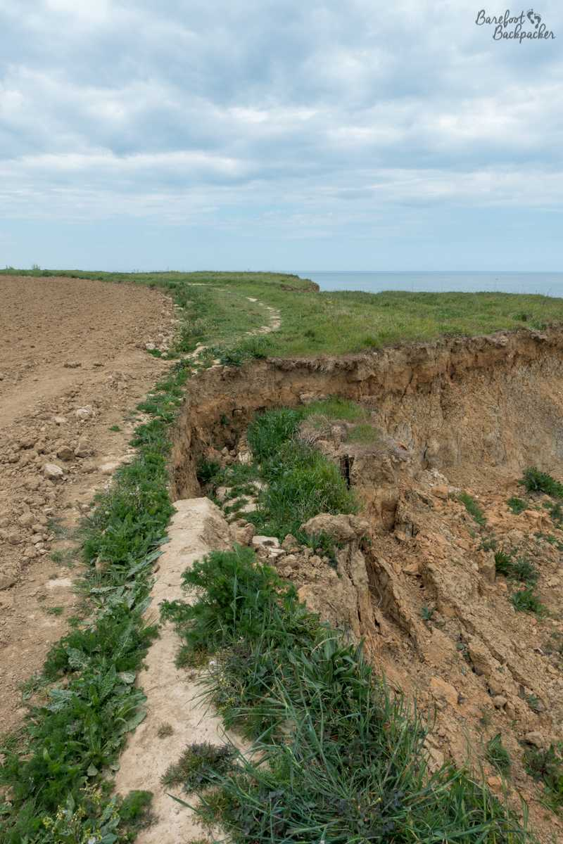 Cliffs at Overstrand; a field is to the left. The Norfolk Coast Path trail can be seen weaving from the field back to the cliff grass to avoid a great big hole in the foreground where the land used to be.