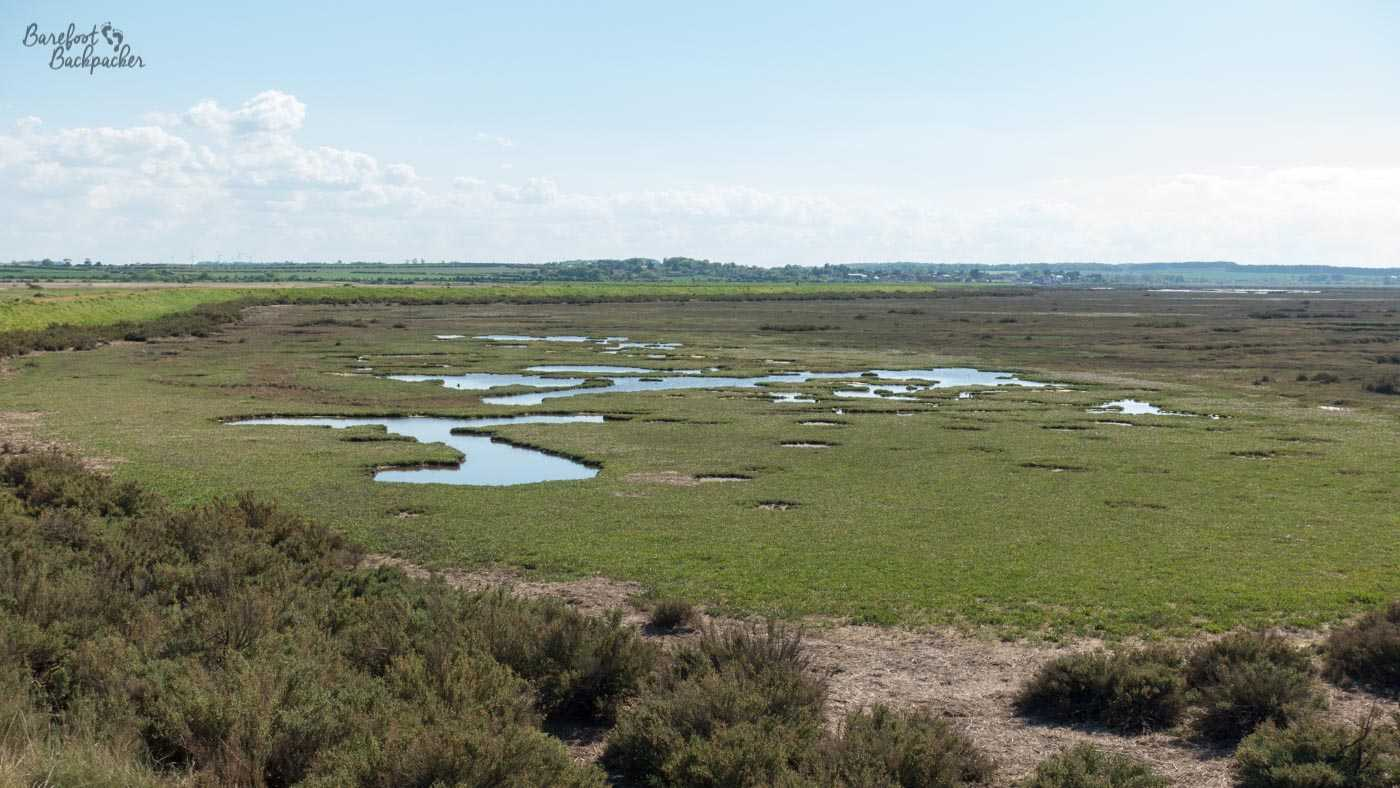 Example of the salt marshes we walked past, which are really common along this stretch of the Norfolk Coast Path. They're flat, green, and have pools of water scattered around them.