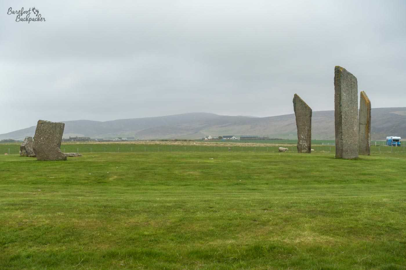 Three tall stones stand in a field, to the right of the image, while on the left are the stumps of two smaller ones. In the distance are farmhouses and hills. A sheep is poking around a couple of the larger stones.
