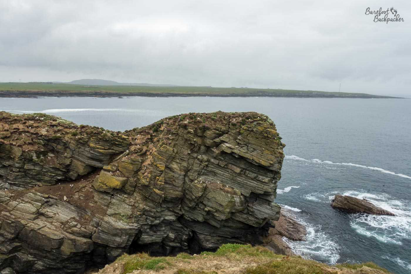Part of the Castle O'Burrian rock stack. It's a long, tall, rock with jagged edges and 'shelving', all covered in birds. Below, the swell of the water is visible as it crashes over some low-lying rocks. The rest of Westray is visible in the background – the shot is looking out over a bay.