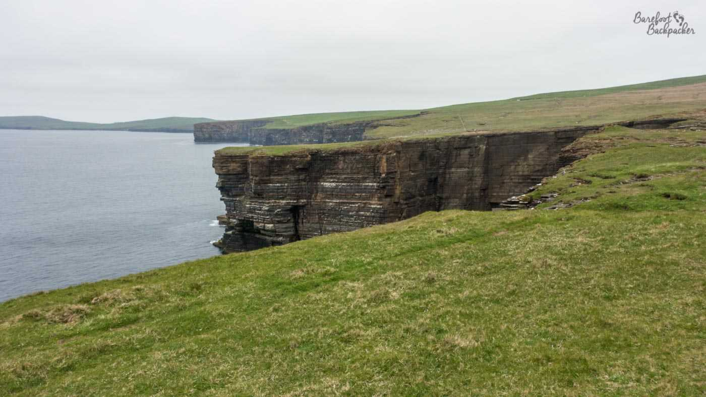 The coastline of Westray, as the grassy land drops onto a sheer cliff edge, several times, with inlets and fjords between. A rough 'people have walked here' trail exists, not far from the drop.